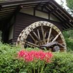 水車小屋とヒガンバナ