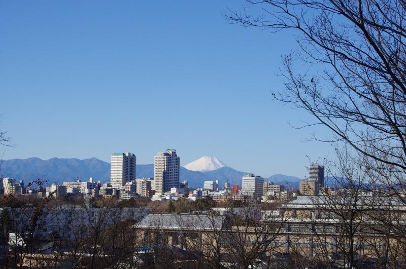 浅間山から見える富士山