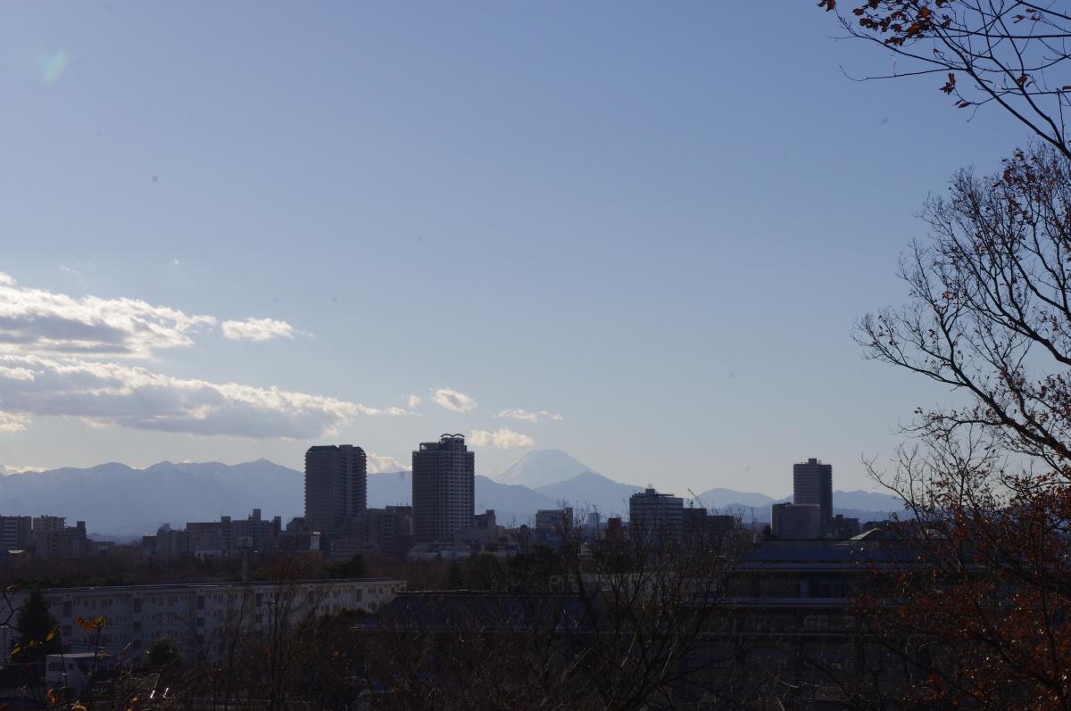 低いところに浮かんだ雲の下には白い富士山