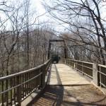 膨らみつつある木の芽に囲まれたキスゲ橋