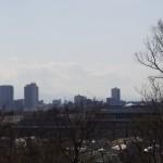 今日は富士山は見えず