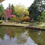 奈良国立博物館の中庭は紅葉していた