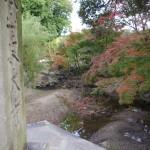 東大寺門前の紅葉