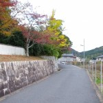 奈良で秋を感じつつ
